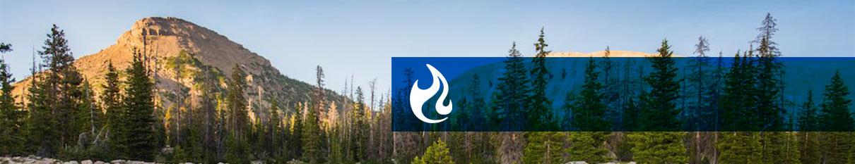 Olicamp header logo